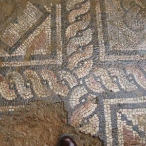 municipium skelani 2008 (134)