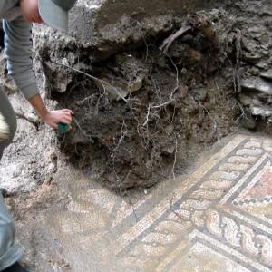 municipium skelani 2008 (2)