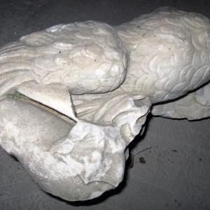 municipium skelani 2008 (68)