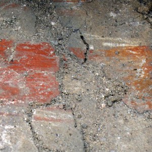 municipium skelani 2008 (75)