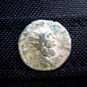 municipium skelani foto galerija (117)